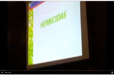 Dr.Damian Marino (UNLP): «Glifosato en gasas esteriles, algodón, tampones»…
