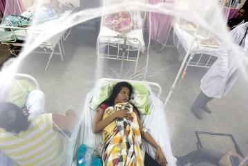 El zika, una mina de oro para las farmacéuticas