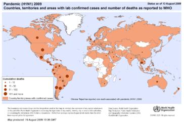Estimación de la mortalidad global asociada a los primeros 12 meses de la circulación del virus de influenza pandémica A H1N1 de 2009: un estudio de modelos