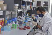 Coronavirus en Uruguay: no hay nuevos casos y en todo el país hay 15 personas enfermas