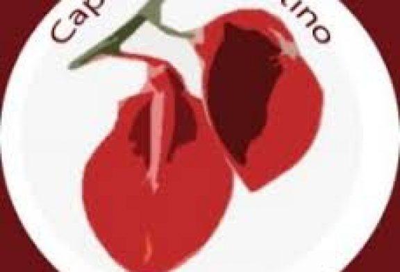 COMUNICADO DEL CAPÍTULO ARGENTINO DE LA REDBIOETICA SOBRE EL AFFAIRE PFIZER Y LAS OBLIGACIONES ÉTICAS Y LEGALES DE LA INDUSTRIA FARMACÉUTICA CON LOS SUJETOS PARTICIPANTES DE LA INVESTIGACIÓN Y LA COMUNIDAD A LA QUE PERTENECEN