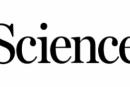 El estatus socioeconómico determina la incidencia de COVID-19 y la mortalidad relacionada en Santiago, Chile